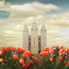 5112555 salt lake temple joyful day panoramic by mandy williams 2 cropb