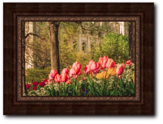 57a6c1a56108 Salt Lake Temple In the Garden (30x40 Framed Art) - Deseret Book