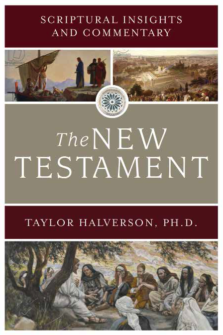 Scriptural insights and commentary new testament